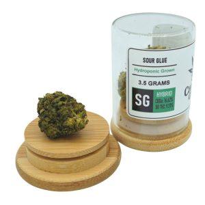 Sour Glue Delta-8 THC Flower